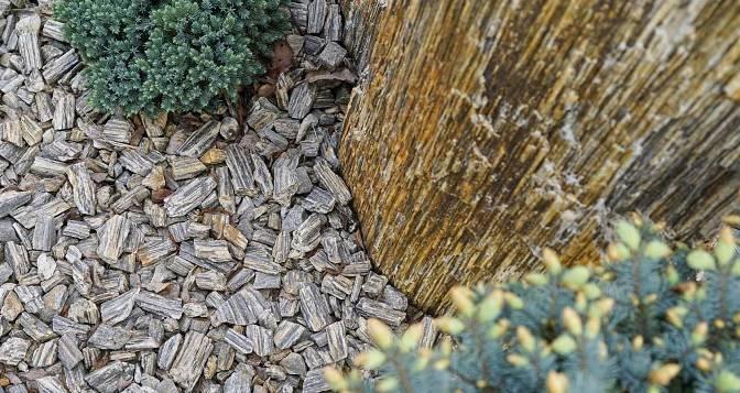 KAMENNÁ KŮRA průměry kamenů 3,2 – 6,3 cm